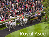 Culture Divine - Royal Ascot, Race Meeting - Ascot
