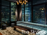 Culture Divine - The Skylark, Cocktail Bar, Lounge and Rooftop Deck - Midtown West